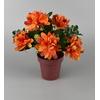 Květináček s chryzantémami