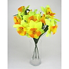 Narcisy svazek 10 ks žluté