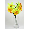 Narcisy svazek 5 ks žluté